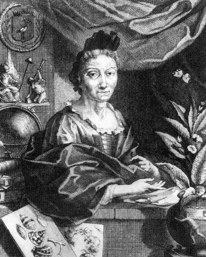 Maria Sybilla Merian (1647 bis 1717)
