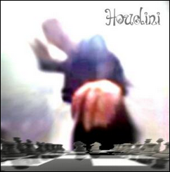 Der aktuelle Leader im Computerschach: Die kommerzielle Chess Engine Houdini